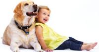 Воспитываем ребенка: стоит ли приобретать домашнее животное?